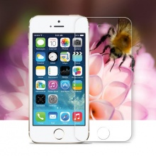HD Screen Protector for iPhone